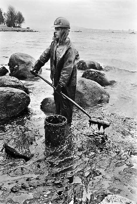 Volunteer cleaning oil spill in Stanley Park, 1973. Source: John Denniston (johndenniston.ca)